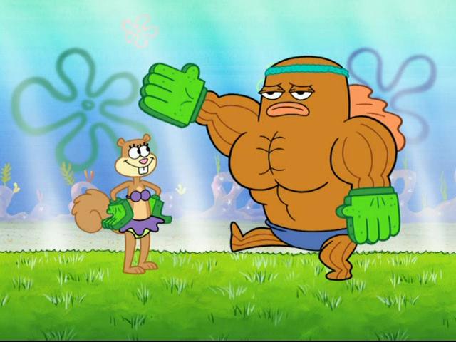 Back Sponge With Handle